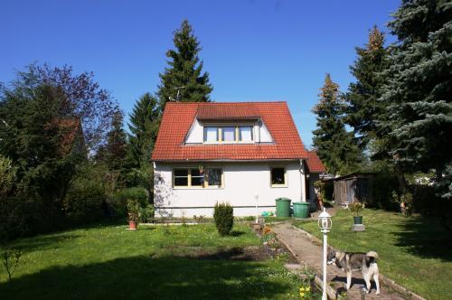 2012 bild 13 Einfamilienhhaus Plauen 2